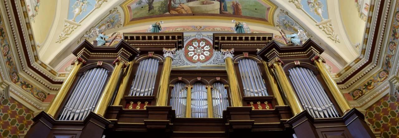 Muzyka w Kolegiacie Jarosławskiej